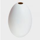 Porcelain Bisque White Egg Vase